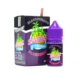 Concentré Blackcurrant Blueberry 30ml Sunshine Paradise