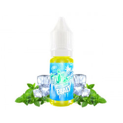FRUIZEE - Icee Mint 10ml Esalt